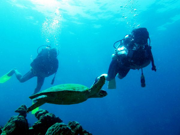 Learn to dive at Mantanani Isalnd